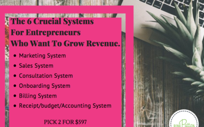 The 6 Systems That Will Help You Grow Revenue (and stop the stress)